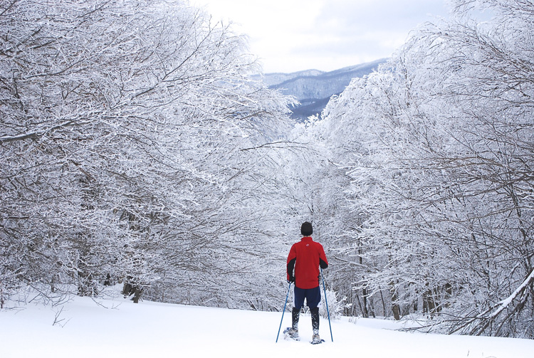 Winter Snowshoeing © Bill Madden