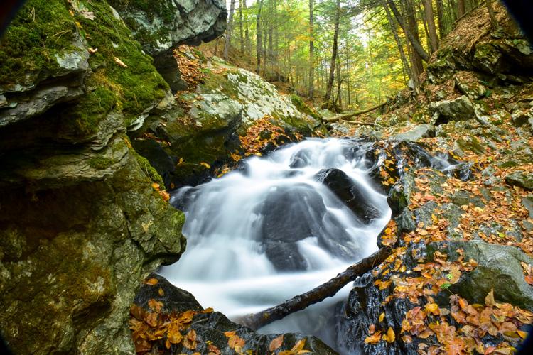 A hidden waterfall in Colrain, MA © Vivien Venskowski