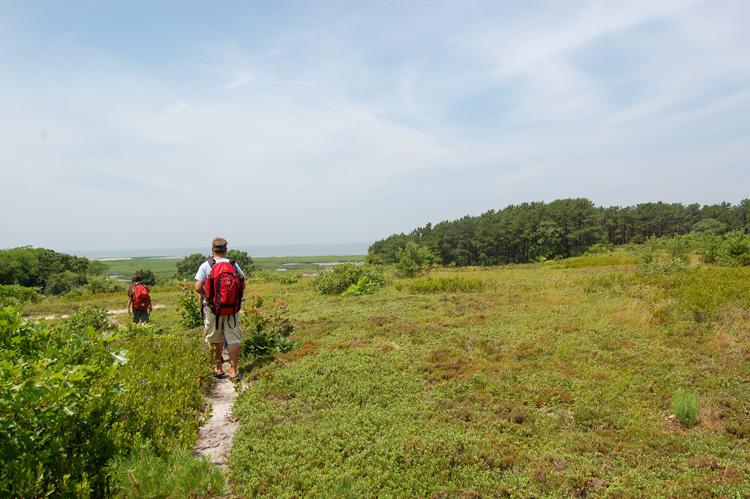 Walking the trails at Wellfleet Bay © Amanda Simon