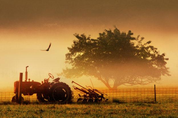 A misty sunrise at Pilot Grove Farm in Stow, MA © Elliot Gilfix