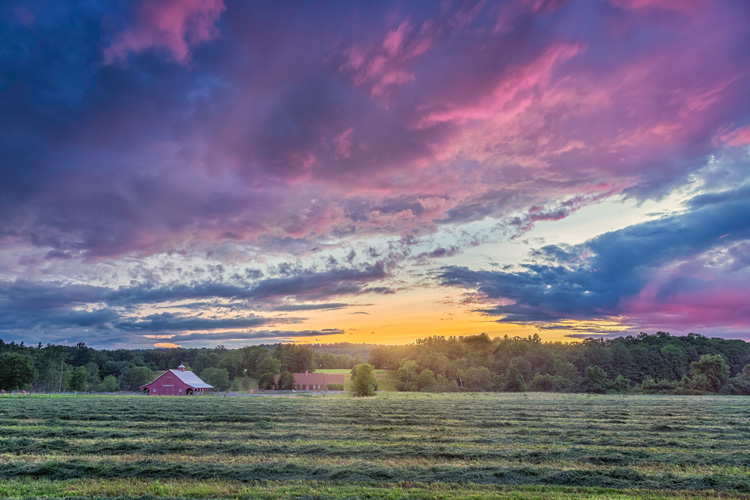 A Family Farm in Whately, MA © Nick SJ