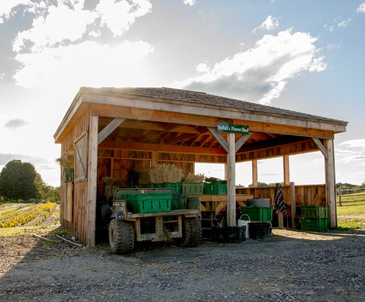 Tendercrop Farm, Newbury, MA © Jane Albert