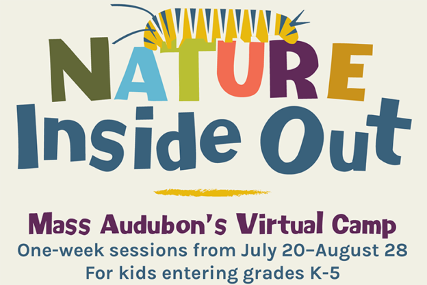 Nature Inside Out Graphic
