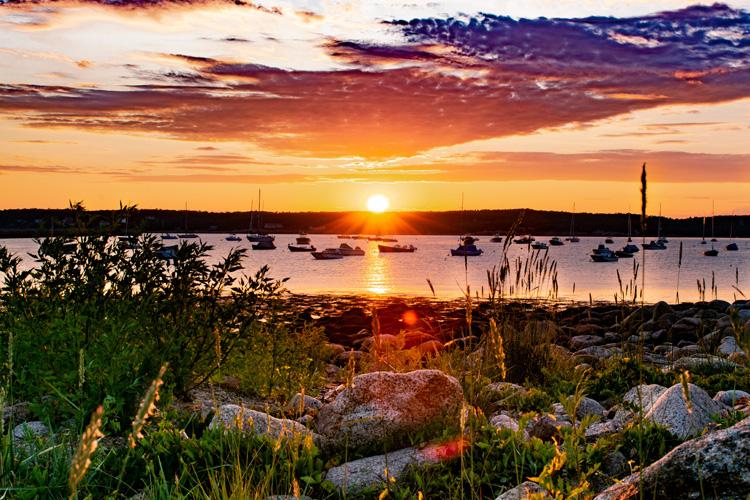 Eastern Point Wildlife Sanctuary © Michael Le
