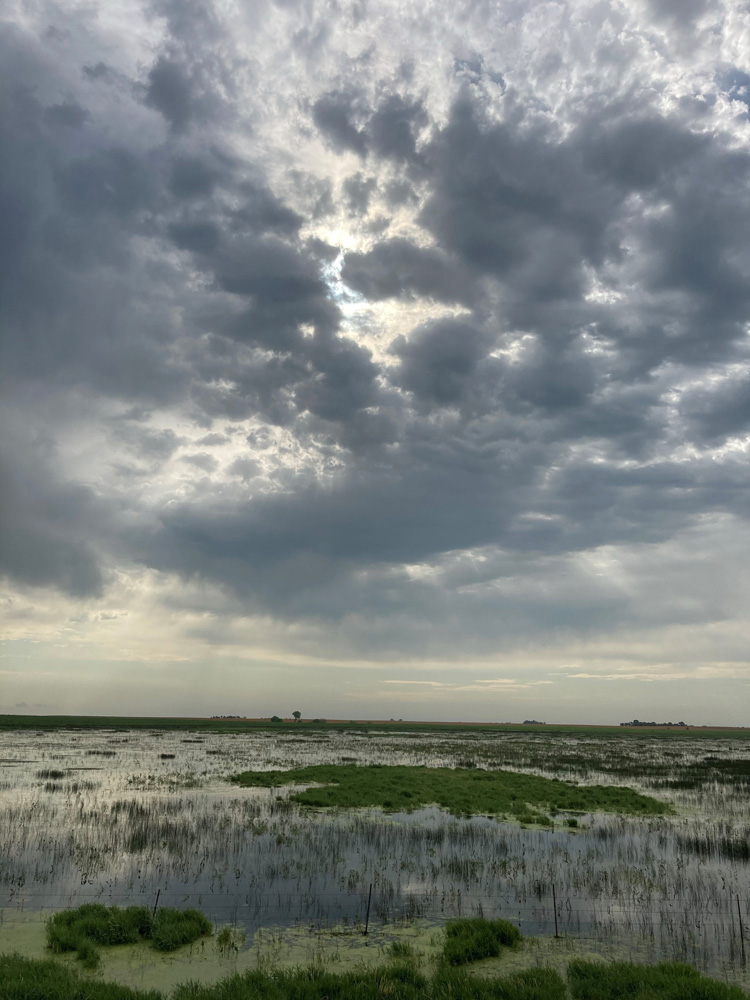 Wetlands in South Dakota © Scott V. Edwards