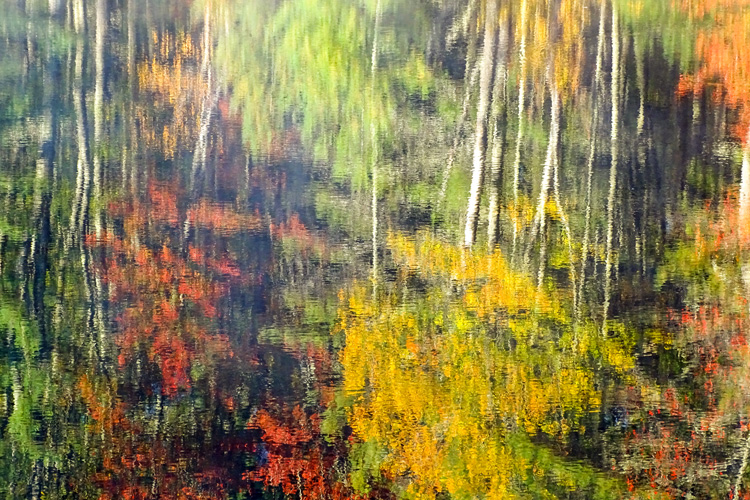 Impressionistic Autumn Color in Rutland, MA © Kimberly Beckham