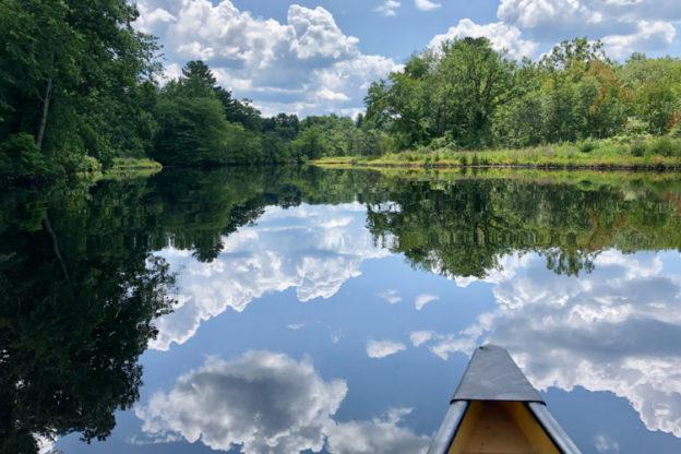 Charles River in Needham by canoe © Kathy Diamond