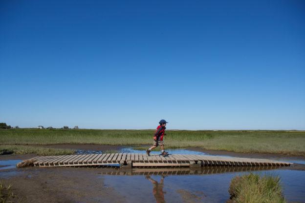 Boy running across boardwalk at Wellfleet Bay
