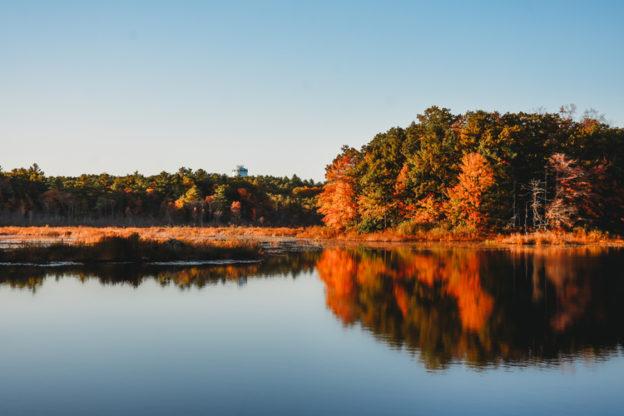Reflections at Stony Brook Wildlife Sanctuary in Norfolk © Mass Audubon